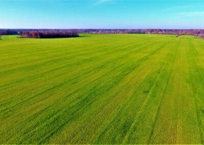 Our Farms | Belltown Farms